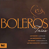 Boleros Tríos, Vol. 1 by Various Artists