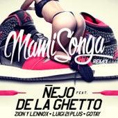 Mamisonga (Remix) [feat. De La Ghetto, Luigi 21 Plus, Gotay & Zion Y Lennox] by Ñejo