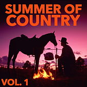 Summer Of Country, Vol. 1 by Various Artists