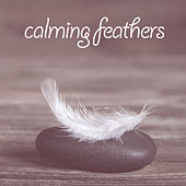 Calming Feathers by Various Artists