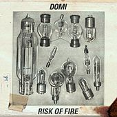 Risk of Fire by Domi