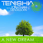 A New Dream (Remixes) by Tenishia