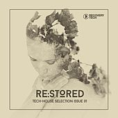Re:Stored Issue 01 by Various Artists