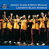 Cologne Zulu Festival by Ladysmith Black Mambazo