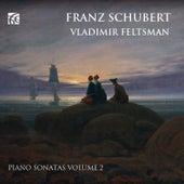 Schubert: Piano Sonatas Volume 2 by Vladimir Feltsman