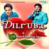 Dilruba by Various Artists