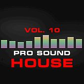 Pro Sound: House, Vol. 10 by Various Artists