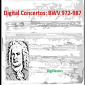 Bach: Concertos, BWV 972-987 by Various Artists
