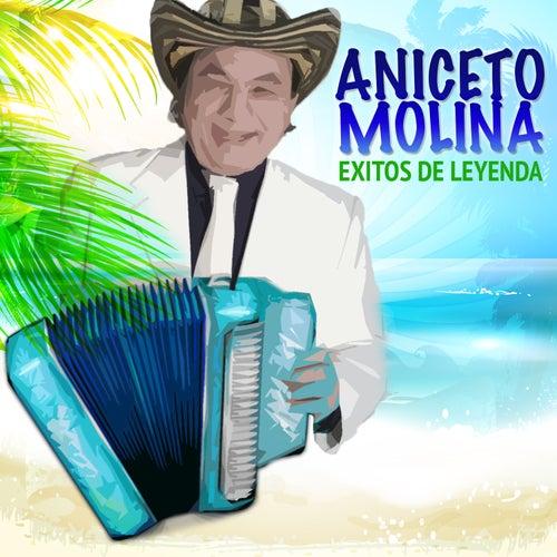 Éxitos de Leyenda by Aniceto Molina