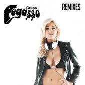Pegassero Presenta by Grupo Pegasso