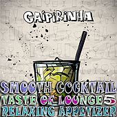 Smooth Cocktail, Taste of Lounge, Vol.5 (Relaxing Appetizer, ChillOut Session Caipirinha) by Various Artists