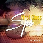 First Class Spa, Vol. 1 by Various Artists