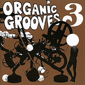 Organic Grooves 3 by Organic Grooves