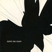 Sonic Rec Room by Various Artists
