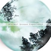 Minimal Groove Experience by Various Artists