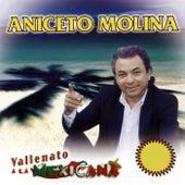 Vallenato a la Mexicana by Aniceto Molina
