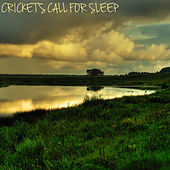 Cricket's Call for Sleep by Various Artists