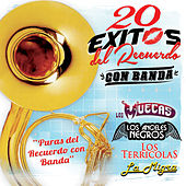 20 Exitos del Recuerdo - Con Banda by Various Artists