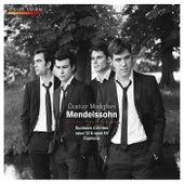 Mendelssohn: Quatuor à cordes, Op. 13 & 80 et Capriccio by Quatuor Modigliani