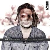 Fundamentals by Argy