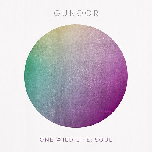 One Wild Life: Soul by Gungor