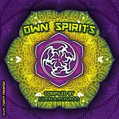 Own Spirits - EP by Various Artists