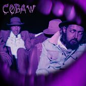 Cobaw / Fool's Gold by The Cactus Channel