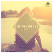 Deep Into the Vibe, Vol. 1 by Various Artists