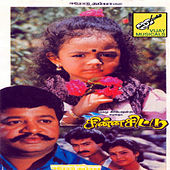 Chinna Chittu (Original Motion Picture Soundtrack) by Various Artists