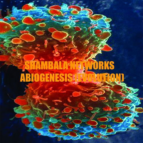 Abiogenesis 2 (Evolution) - Single by Shambala Networks