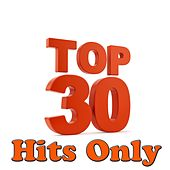 Top 30 Hits Only by Various Artists