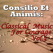 Consilio Et Animis: Classical Music For Courage, Vol.3 by Novosibirsk Philharmonic Orchestra
