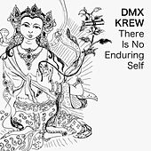 There Is No Enduring Self by DMX Krew
