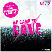 We Came to Rave, Vol. 2 by Various Artists