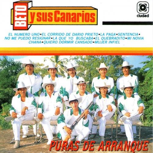 Puras de Arranque by Beto Y Sus Canarios