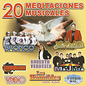 20 Meditaciones Musicales by Various Artists