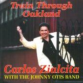 Train Through Oakland by Johnny Otis