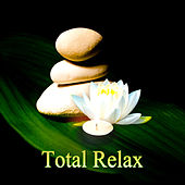 Total Relax - Music for Massage, Wellness Spa, Relaxation, Healing, Beauty, Meditation, Yoga, Deep Sleep and Well-Being, Instrumental Music & Sounds of Nature by Various Artists