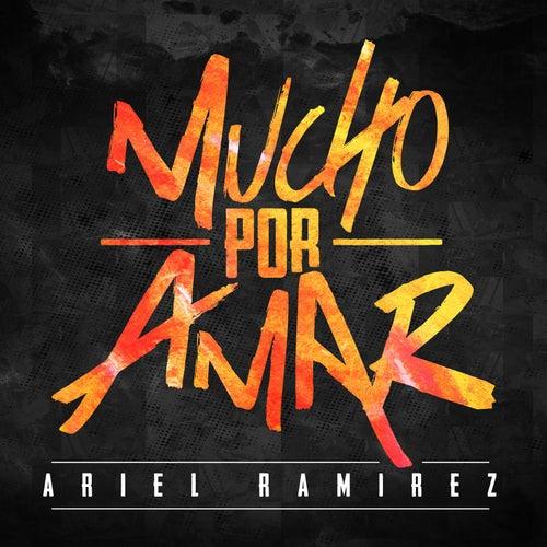 Mucho Por Amar by Ariel Ramirez