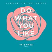 Do What You Like (Liquid Cosmo Remix) [Radio Edit] by Taio Cruz