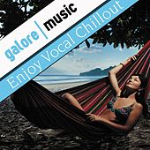 Enjoy Vocal Chillout by Various Artists