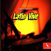 Latin Vive by Gabriel Marchisio