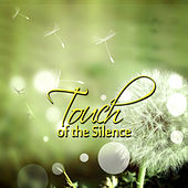 Touch of the Silence - Soothing Background Music for Restful Sleep, Meditation, Massage, Reduce Stress, Study, Reiki Healing, Body and Soul, Relaxation Therapy by Various Artists