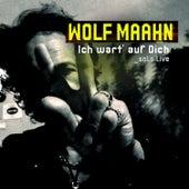 Ich wart' auf Dich - Solo Live by Wolf Maahn