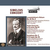 Sibelius Concert by Various Artists