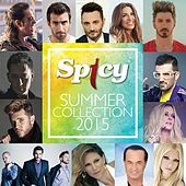 Spicy Summer Collection 2015 by Various Artists