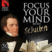 Focus Your Mind with Schubert: 50 Tracks by Various Artists