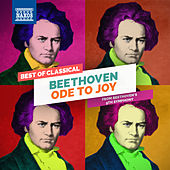 Beethoven: Ode to Joy by Gabriele Lechner