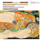 Schubert (arranged by Mahler): Death and the Maiden for String Ensemble, Andante from String Quartet No. 13 'Rosamunde' by I Solisti di Perugia
