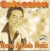 Coleccion Original by Marco Antonio Muñiz